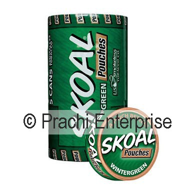 SKOAL POUCH WINTERGREEN (5 CANS)